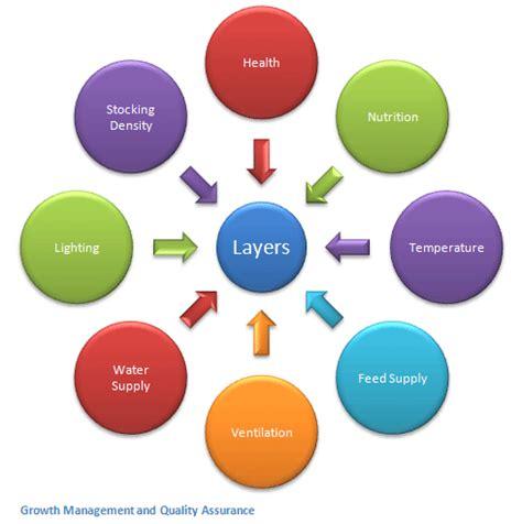 Sample business plan designs